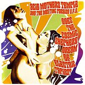 Does The Cosmic Shepherd Dream of Electric Tapirs? by Acid Mothers Temple