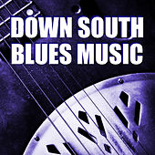 Down South Blues Music by Various Artists