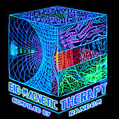 BioMagnetic Therapy by Various Artists