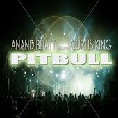 Pitbull by Anand Bhatt