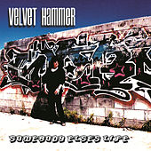 Somebody Else's Life by Velvet Hammer
