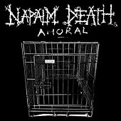 Amoral by Napalm Death