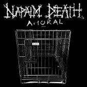 Amoral di Napalm Death