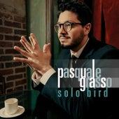 Solo Bird de Pasquale Grasso