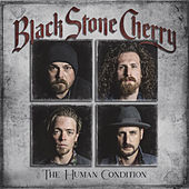 Again by Black Stone Cherry