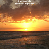 Summer Nightzzz de Fan Sounds