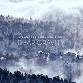 Strangers Among Our Own by Dear Gravity