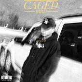 Caged Bird by Prophet