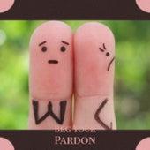 Beg Your Pardon by Pat Boone, Hank Thompson, Eddie Noack, Wanda Jackson, Eddie Cochran, The Everly Brothers, Billy Riley