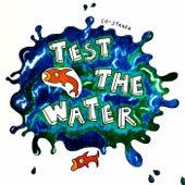 Test The Water de Costanza