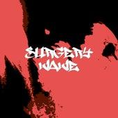 Wave de Surgery