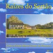 Raizes do Sertao, Vol. 2 von Various Artists