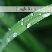 Jungle Rain by Nature Sounds (1)