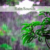 Rain Sounds by Nature Sounds (1)