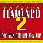 Yo Sueno Flamenco, Vol. 2 de Varios Artistas