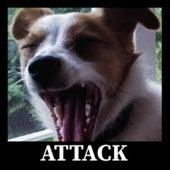 Attack by Sander