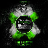 DS2B Collective Volume 2 von Various Artists