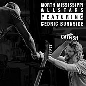 Catfish de North Mississippi Allstars
