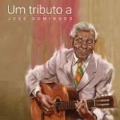 Um Tributo a José Domingos de Various Artists