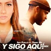 Y Sigo Aquí (Remix) de Any Puello
