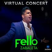 Fello Zabaleta + Virtual Concert de Fello Zabaleta