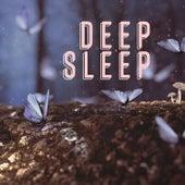 Deep Sleep by Various Artists