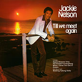 Till We Meet Again by Jackie Nelson