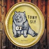 Sad Bear by Tony Sly