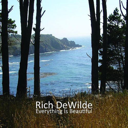 Everything Is Beautiful by Rich DeWilde