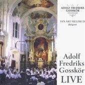 Adolf Fredrik Boys Choir: Live by Various Artists