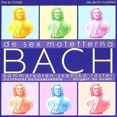 Bach: The 6 Motets by Bo Aurehl