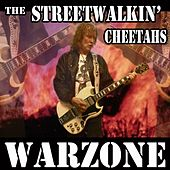 Warzone by The Streetwalkin Cheetahs