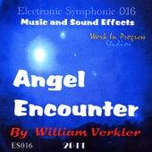 Angel Encounter by William Verkler