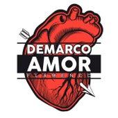 Amor von Demarco Flamenco