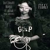 Self Isolate (feat. Arina) (Remix) by The Figgs