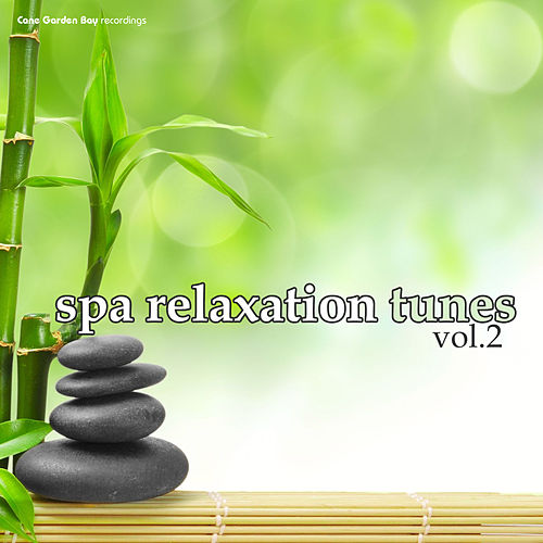 SPA Relaxation Tunes Vol.2 by Various Artists
