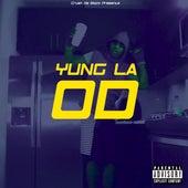 OD de Yung LA