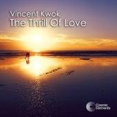 The Thrill of Love von Vincent Kwok