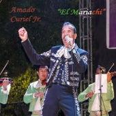 El Mariachi by Amado Curiel Jr.
