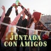 Juntada con amigos by Various Artists