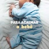 Para Acalmar o Bebê de Various Artists