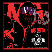 PCH 2 (The Rehash Matrix) de Monsta Ganjah