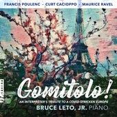 Gomitolo! An Interpreter's Tribute to a COVID-Stricken Europe von Bruce Leto  Jr.
