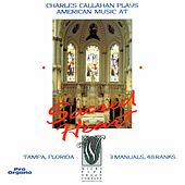 Callahan, Manz & Others: Organ Works de Charles Callahan