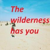 The wilderness has you . de Pham