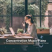 Concentration Music Piano: 14 Beautifully Relaxing Piano Pieces for Study and Focus de Various Artists