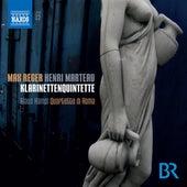Reger & Marteau: Clarinet Quintets by Klaus Hampl