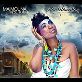 The Blooming by Maimouna Youssef