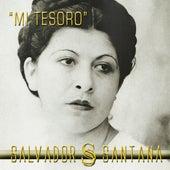Mi Tesoro - Single by Salvador Santana