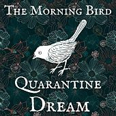 Quarantine Dream by Morningbird